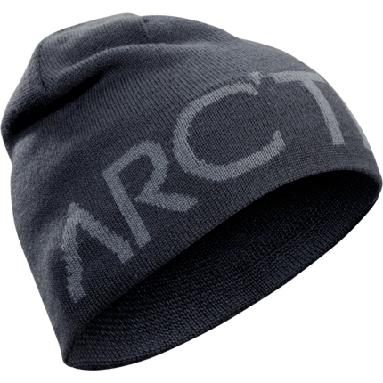 Bilde av: Grå Arcteryx Word Head Toque